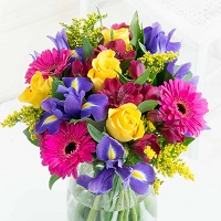 Ferns N Petals: Get up to 12% OFF on Bestselling Flowers