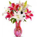 Celebrate with Women's Day Flowers Orders