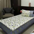 Get 18% off Contrast Border Gold Print Bed Sheet Set Orders