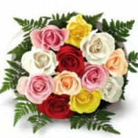 MyFlowerTree: Starting at ₹ 399 off Sameday Flower Delivery Orders