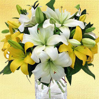 India Flower Mall: Starting at ₹ 450 off FRESH FLOWERS Orders
