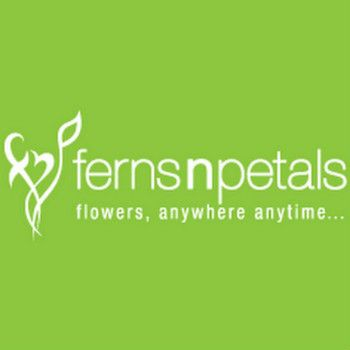 Ferns N Petals Offers Deals